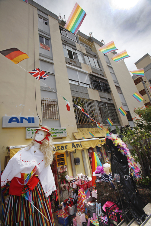 ANI Gaypride 2011  2013 01