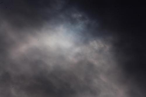 Eclipse Hibrido de Sol 031113 06