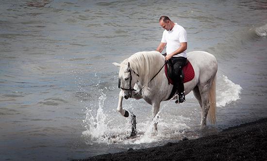SPAIN-HORSES-PILGRIMAGE-SEBASTIAN